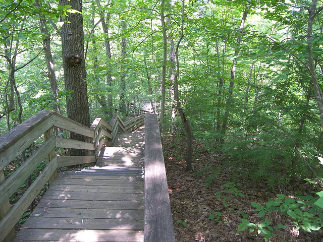 Hemlock Bluffs Nature Preserve, Cary NC