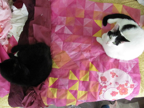 Cat sleeping quilt with cats sleeping