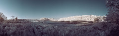 PanoA (Excaliber2013) Tags: panorama ir infrared falsecolor lifepixel marshlandsconservancy