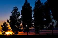 O Sol pedindo passagem!! (Claudia Oseki) Tags: road blue brazil sky sun tree nature sunshine braslia brasil landscape bush shine paisagem cu goinia gois silhueta silhuette
