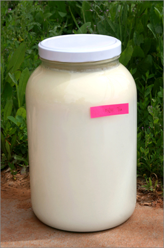 one gallon o' milk