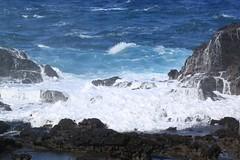 IMG_7729 (Seat23ARegan) Tags: hawaii maui nakaleleblowhole
