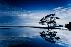 Dream Catcher (Lockie Cooke) Tags: longexposure trees sky sun motion reflection beach water pool weather clouds canon bay movement sand exposure mud salt dream australia qld ripples radiate mangroves cloudscape 1740 mangrovetree nudgee nudgeebeach 5dmkii lockiecooke