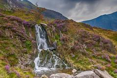 Flowing (Lee~Harris) Tags: water motion flow flowing waterfall watercourse wales snowdonia landscape scene scenic rugged uk rocks mountain outdoor