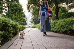 IMG_2105.jpg ( Yukio Endo) Tags: shelly