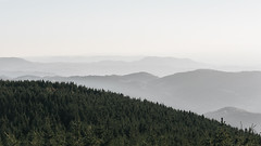 Schwarzwald Nebel (thorsten_fr) Tags: nebel blackforest wlder schwarzwald fog