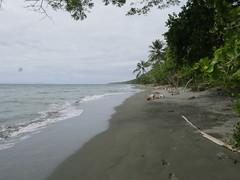 Guadalcanal!