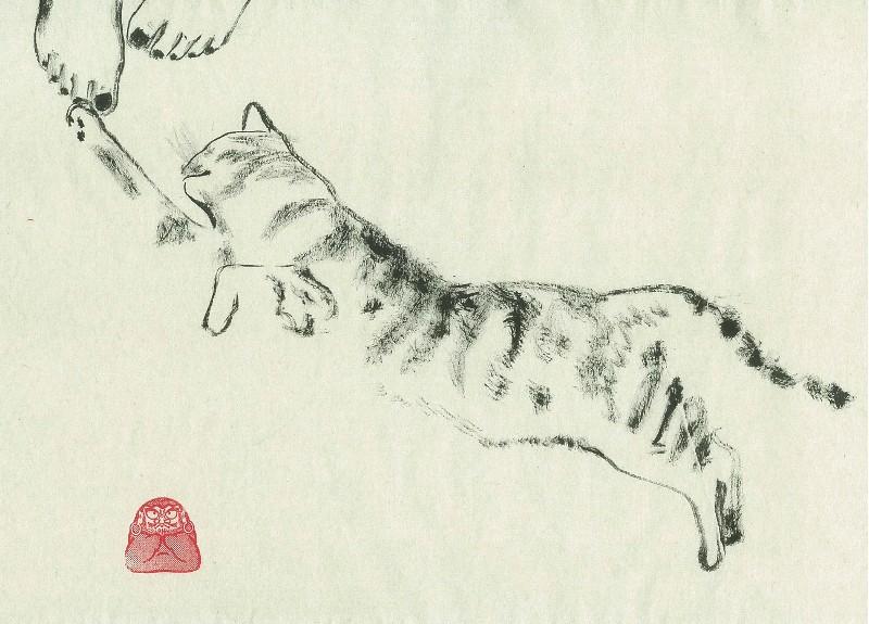 _cat-3_