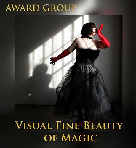 4 AWARD visual fine beauty, of magic for SPECIAL ART AWARD
