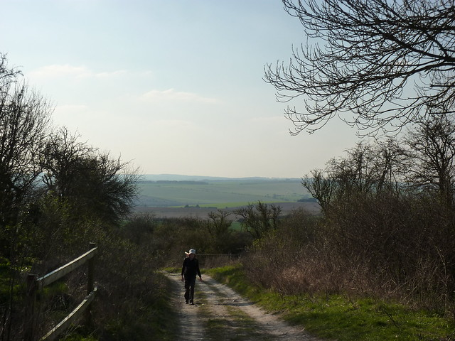 Somewhere near the Roden Downs