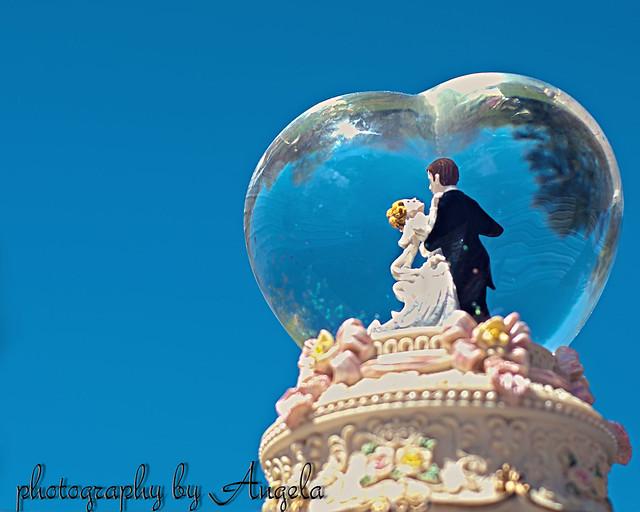 MCP week 14/52 Hdr bride and groom