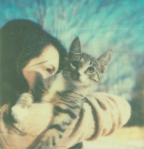 フリー写真素材, 動物, 哺乳類, ネコ科, 猫・ネコ, 人物, 女性,