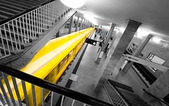 color is key (Tafelzwerk) Tags: bw white black berlin station yellow germany deutschland blackwhite nikon metro sigma wideangle gelb ubahn alexanderplatz sw schwarzweiss weiss schwarz metrostation u5 weitwinkel colorkey hnow d7000 nikond7000 sigma816mm tafelzwerk tafelzwerkde