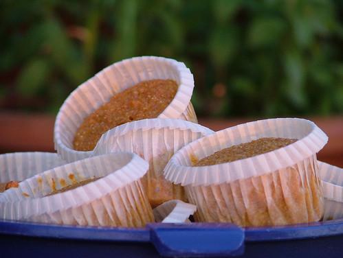 spelt, buckwheat and carrot muffins