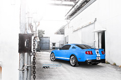 ADV.1 Shelby GT 500 7 (GREATONE!) Tags: blue sexy high nikon key florida miami bees alien wheels fast tires boutique mia shelby mustang 500 gt fla grabber nitto adv1 d300s