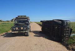 Wrecked Landy, Serengeti 1