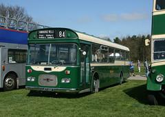 Leyland Panther/Strachan LKT 132F (ƒliçkrwåy) Tags: bus panther leyland strachan detling maidstoneanddistrict md100 lkt132f
