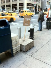 stump (ioby) Tags: trash flowerbed compost recycling buslane cleanerair ioby iobyorg reimaginenyc safeforcyclists