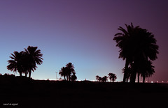 Night Silhouette (  || saud alageel) Tags: sea canon lens 1 zoom tag 4 explore e mm 500 55 250 d500 lense saud 500d  khobar kfupm alkhobar 250mm   explored    55250       55250mm       sharqeyah  alageel