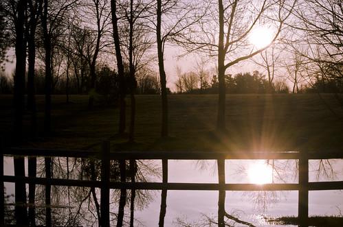 112:365 Sunrise on my favourite puddle