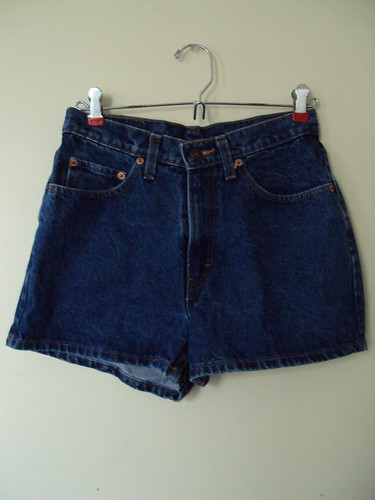 Jordache Denim Shorts