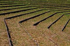 Stairs (Karmen Smolnikar) Tags: grass stairs soil slovenia slovenija skofjalokakofjaloka