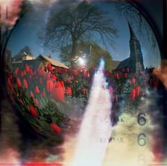 light of the tulips (Ben Wolfarth) Tags: light sky 6 fish colour eye love church rainbow lomo triangle tulips kodak magic diana f analogue psychedelic psychedelia bohemian exsposure leaks ektar douple lomopraphy