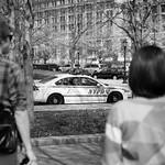 NYPD thumbnail