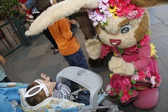_MG_1111_Crédito Cleiton Thiele/SerraPress (Chocofest Páscoa em Gramado) Tags: kids chocofest garotada