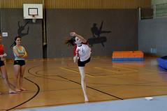 2011-Giffers-GM-VA-0279 (Diabolik63) Tags: gm va 2011 gymnastique giffers
