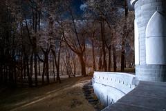 #30 (cpuchip) Tags: park autumn trees nature ir moscow sony infrared alpha a200 hoya r72 alpha200 afdt18703556