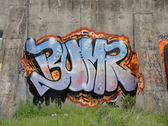 BUMR (Same $hit Different Day) Tags: graffiti bay east crew nasty bumr