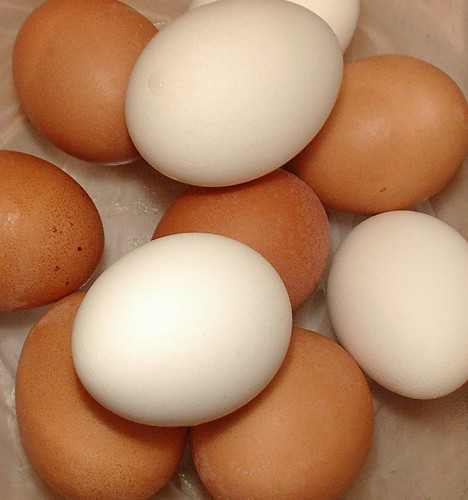 brown and white eggs  boiled