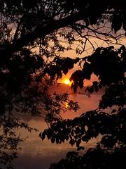 Au travers des branches *---- ° (Titole) Tags: sunrise leverdesoleil orange feuilles branches leaves branch reflet reflection brume mist friendlychallenges diamondsawards nicolefaton titole perpetual