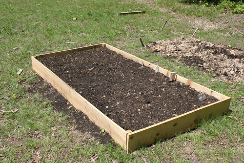 A four foot by eight foot raised bed with sides of untreated 1 x 8, filled with good dark earth.  At the far end, you can see shoots of corn coming up.  A row of bags on sticks at the right side identifies where various vegetables will ideally appear.
