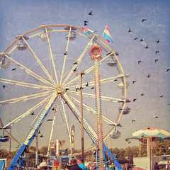 Canada geese made me do it (Irene2005) Tags: 35mm photoshopped ferriswheel sliding postprocessing hss ncstatefair fromthearchives f20 primelens nikond90 texturebyjessicadrossin sliderssunday geeseoverlay