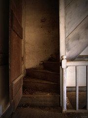 This way to the third floor (History Rambler) Tags: wood old abandoned architecture stairs rural decay south northcarolina plaster historic southern plantation vacant ward simple antebellum decayed solid newelpost edgecombecounty primptive harmonward boxstairway boardandbattendoor