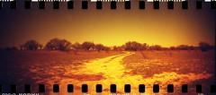 2011-03-06 Lomography Sprocket Rocket Kodak Gold 800 Redscale 006 (Gimel Vav) Tags: lomography kodak sprocketholes redscale kodakgold800 gold800 sprocketrocket lomographysprocketrocket