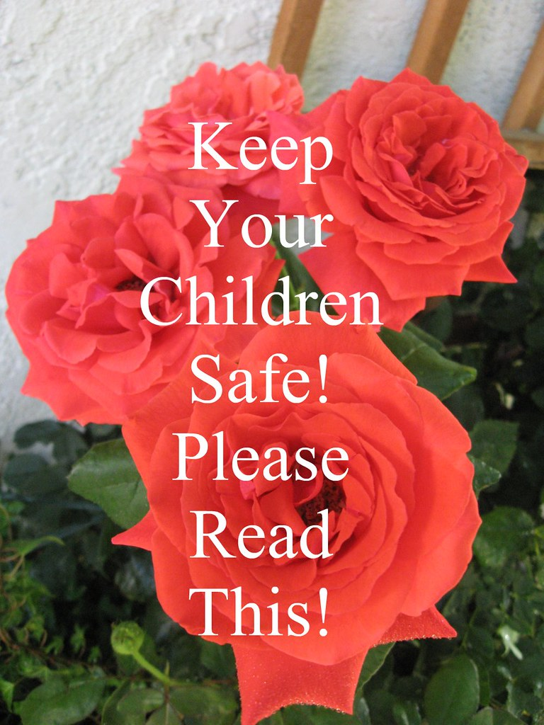 KEEP YOUR CHILDREN SAFE! PLEASE READ THIS!