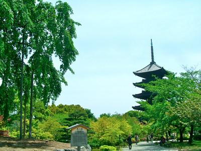京都の神社・お寺巡り「月に一度!神社やお寺の月の市へ行こう」