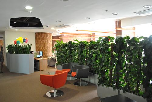 Зеленые растения Яндекса