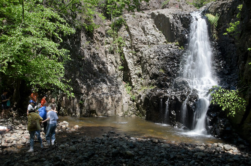 Enjoying Hemlock Falls [Mayapple Festival]