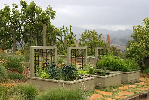 veggie beds