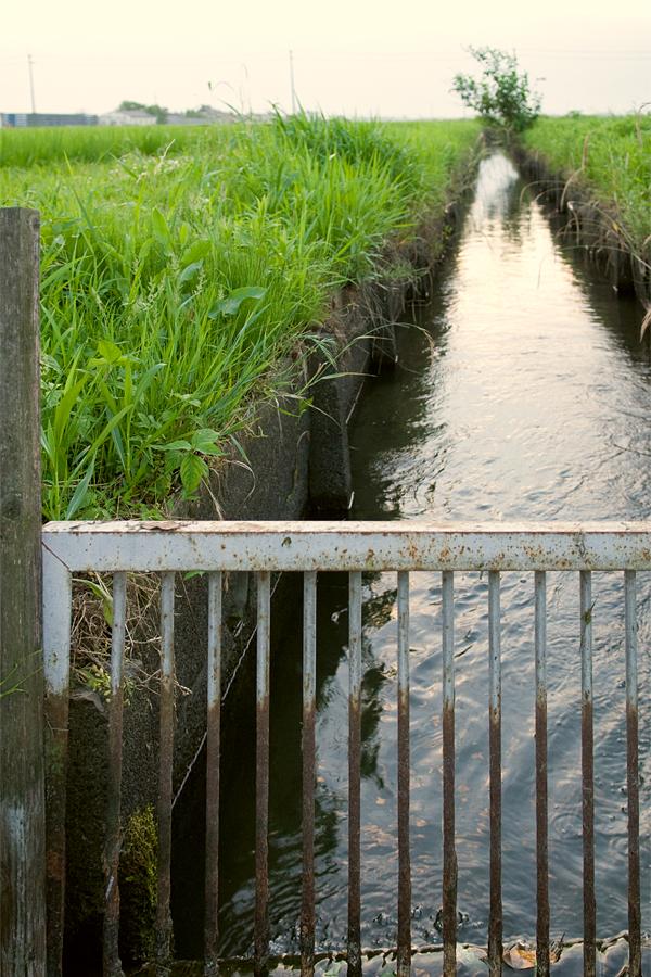 水のある風景|滋賀県守山市