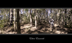 Test (edwinemmerick) Tags: panorama 20d bike photoshop canon eos stitch mountainbike downhill dh mtb edwin cs3 ourimbah emmerick edwinemmerick