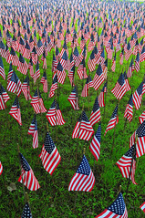 one flag for each soldier (shutterjo) Tags: field flag americans soldiers killed somegaveall fieldofflags