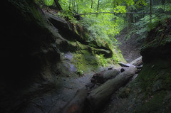 rocky trail (charlesgyoung) Tags: park tree rock forest indiana canyon d3 gulch turkeyrunstatepark nikonfx
