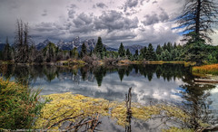 Beaver Pond Calm (Tom Lussier Photography) Tags: mountain storm water clouds forest reflections river landscape nationalpark nikon rockymountain rockymountains wyoming grandtetonnationalpark d300 schwabacherslanding grandtetonnationalparkwyoming landscapelovers