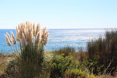 Meer (kaistaudinger) Tags: wasser portugal algave welle stein fels sonne strand sand wetter canon 700d tamron 18270mm polfilter oktober