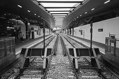 13 14 15 stop... (bmxhag) Tags: bw london scan kodaktrix400 olympusxa2 railway station londonbridge perspective platform text contrast analog xa2 olympus city urban transport film 35mm plustek